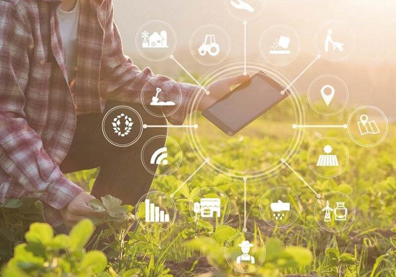 Innovaciones en Iot, automatización del hogar y oficina, Dispositivos de computación personales