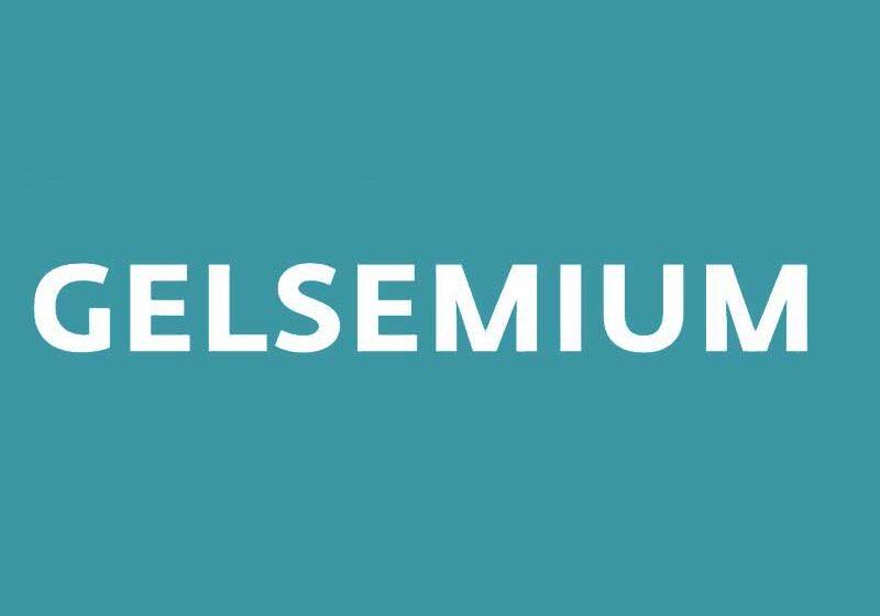 ESET descubre la última versión de Gelsemium