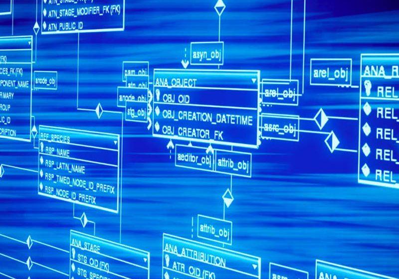 Los datos son hoy, y a futuro, el principal capital de las empresas