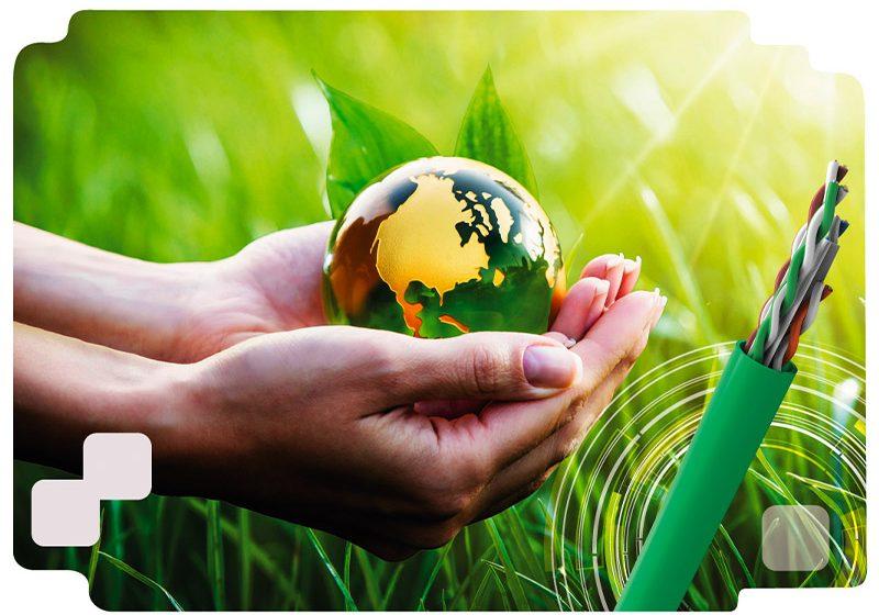 Organizaciones en 2021: ¿cómo promover acciones sustentables para el cuidado del ambiente?